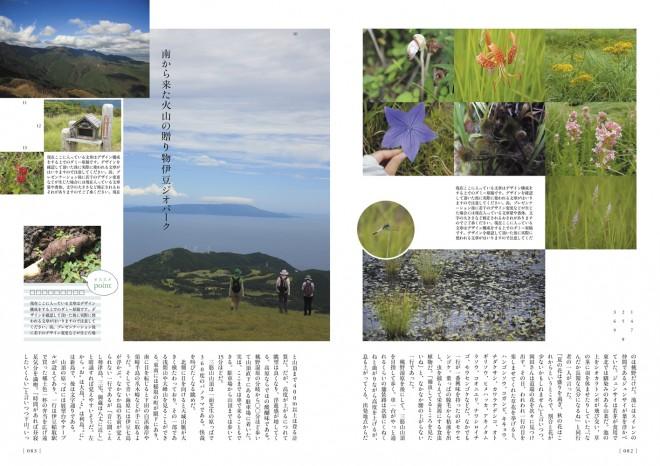 p80-84_hosono_s