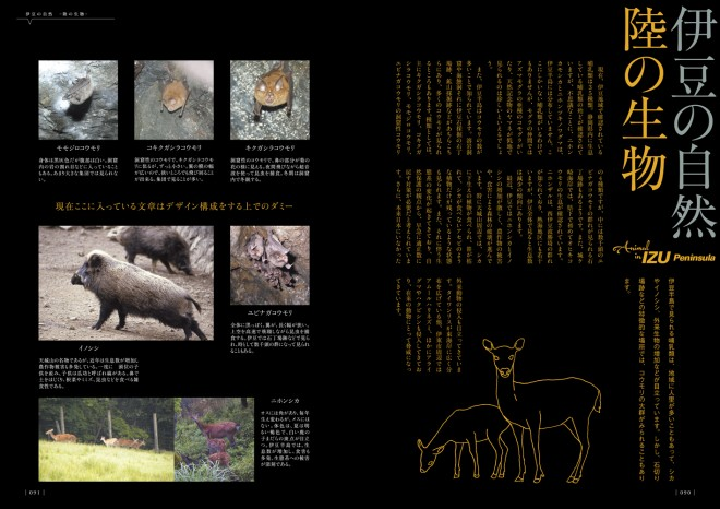 p82-92_zukan_s